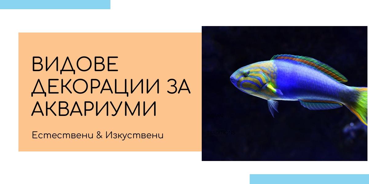 декорации за аквариуми
